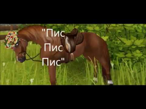 SSO||Что делают ваши лошади пока вы не в игре