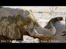 18 Days Namibia,Botswana and Victoria Falls Group Tour (Enrico's Safaris)