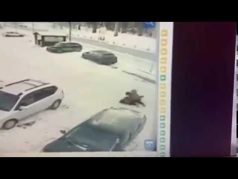 Жестокое убийство девушки в Подмосковье