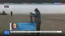 Новости на Россия 24 • Иракская армия отбила телецентр у ИГИЛ