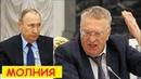 СРОЧНО! Злой Жириновский Всё высказал ПУТИНУ на Совете Федерации