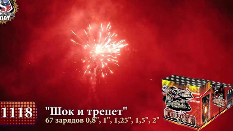 01118 Шок и Трепет калибр Премьер салют 0,8, 1, 1,25, 1,5, 2 залпов 67