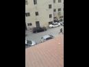 La soldatesque juive de siona pris dassaut lhôpital Alia à Hebron