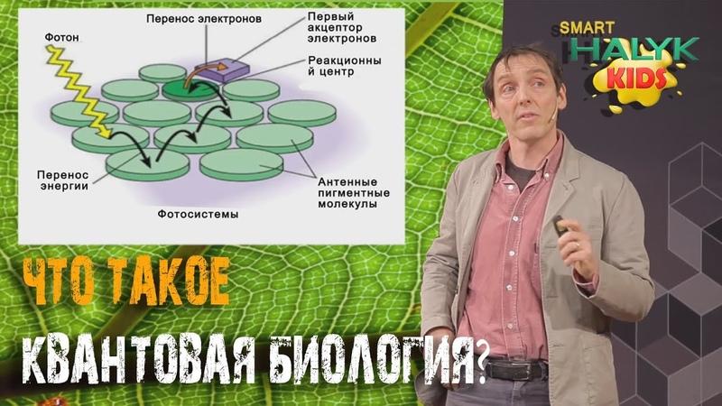 Что такое квантовая биология? Лекция Филипа Болла.