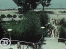 Ростов на Дону Летняя зарисовка 1973 год
