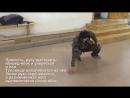 кувырок поперечный Нижняя акробатика Уроки Системы Кадочникова от Тертычного А Н