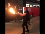Elon Musk showing Joe Rogan his flamethrower