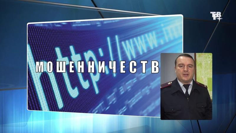 Рубрика Дежурная часть от 15.11.18