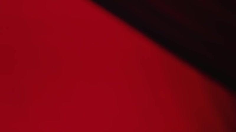 MISERLOU - William Joseph Caroline Campbell (feat Tina Guo) EXPLOSIVE cover fr