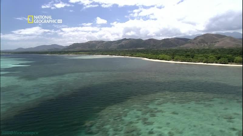 Хранители природы Новая Каледония Познавательный путешествие 2005