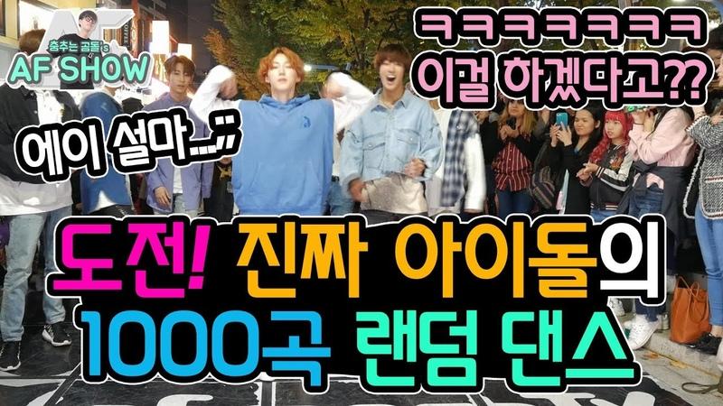 VAV Real IDOL Random K POP Dance Challenge 춤추는곰돌 AF STARZ