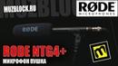 Rode NTG4 - обзор и демонстрация микрофона