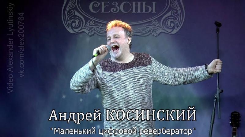 Андрей КОСИНСКИЙ - Маленький цифровой ревербератор