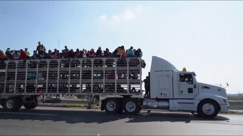 Слово Трампа не закон: караван мигрантов продолжает путь к границе США