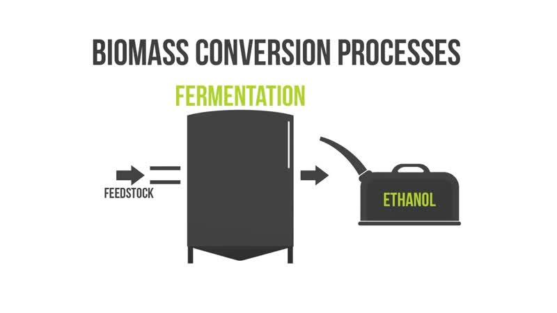 Биоэнергия или энергия биомассы