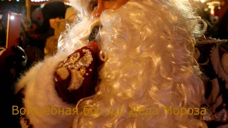 Всероссийский Дед Мороз Волшебная борода