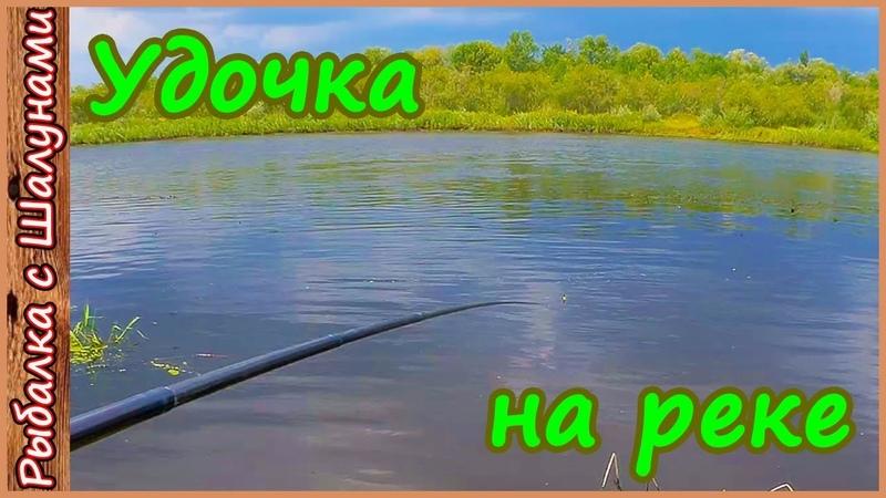 Ловля уклейки на удочку Поплавочная рыбалка