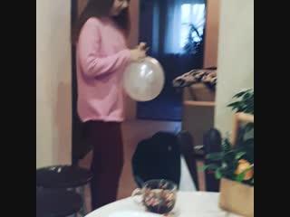 День рождение 16лет#доченькалюбимая#приколы с шариками😁🎂🍭😂🐱💐