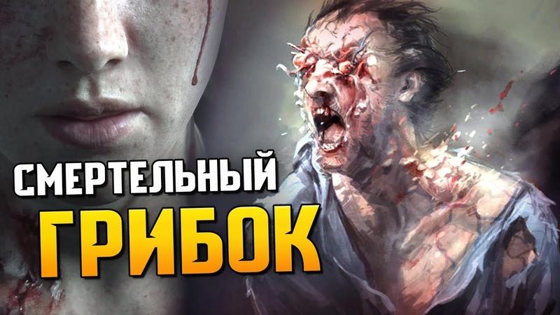 КОРДИЦЕПС из The Last of Us: стадии заражения, симптомы, способы борьбы