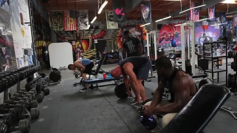 Тренировка с Mike Rashid 1. (Упражнения для спины)