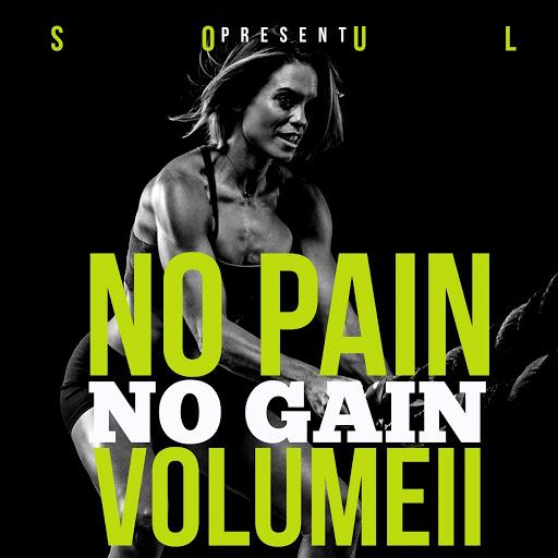 Soul альбом No Pain No Gain, Vol. 2