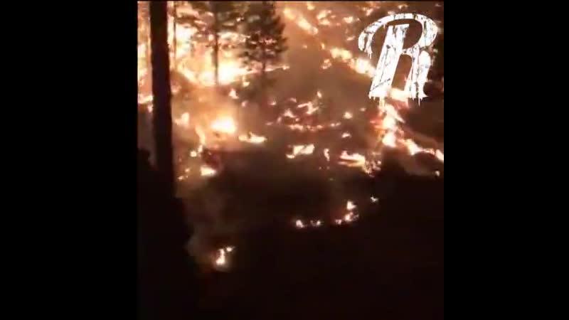 Очевидцы на пожаре