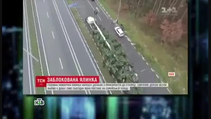 Новогодняя ёлка Киева 😂