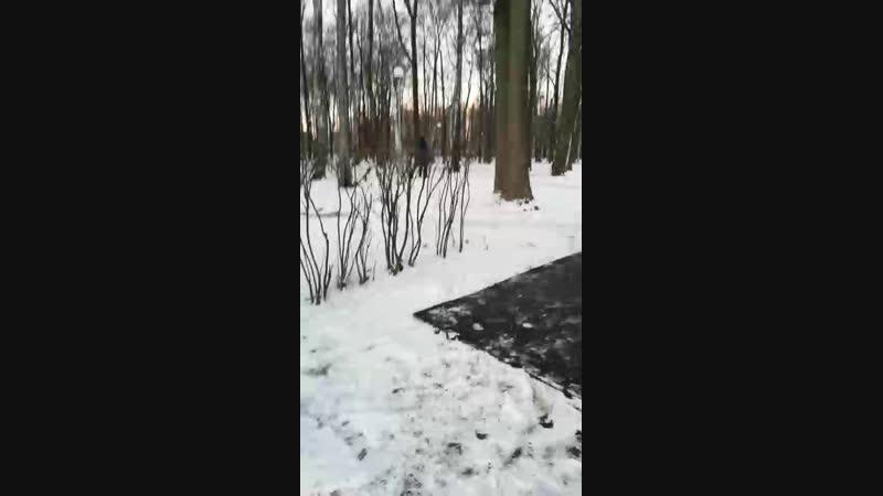 Яков Драгунов Live