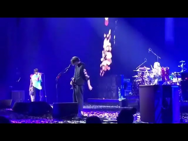 RHCP - This Is the Place (fragment) - Live 2019, Microsoft Theater, LA