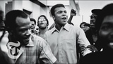 Muhammad Ali Obituary Whats My Name The New York Times