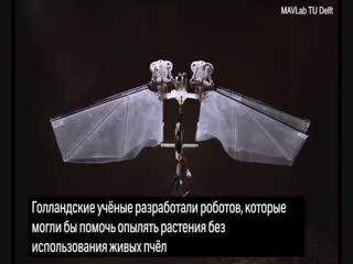 Созданы роботы, которые должны заменить живых пчёл