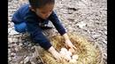 Trò chơi tìm trứng bất ngờ trong vườn của bé Gia Huy  The game finds unexpected eggs in the garden