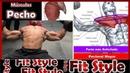 Conoce los Músculos del Pectoral más 10 Ejercicios para Pecho
