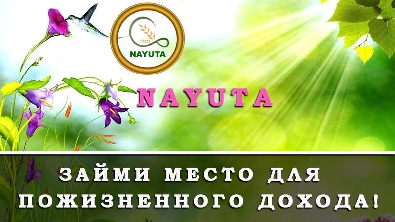 Наюта * Nayuta * денежный поток в сетевом маркетинге