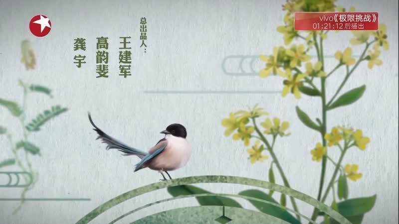 [Документальный фильм о китайской медицине] «Materia Medica China» Эпизод 3: Ходить пешком, или Ходьба ''БуЛу''.