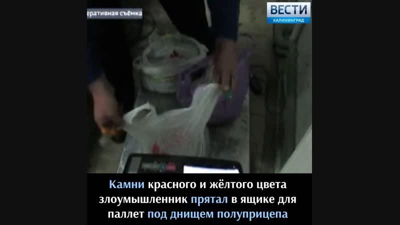 Таможенники задержали россиянина, пытавшегося провезти в Литву более 10 килограммов янтаря