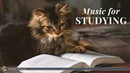 Classical Music for Studying Brain Power | Mozart, Vivaldi, Tchaikovsky