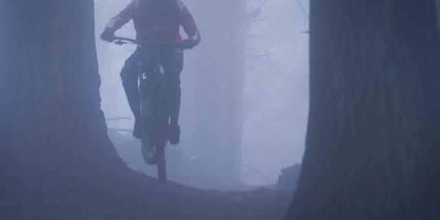 The fog hills