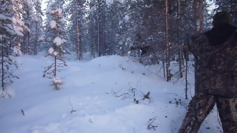 Охота на медведя на берлоге (расстрел зверя) - видео из интернета, не моё