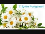 С Днем Рождения Нина Николаевна