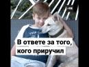 Мальчик стал продавать лимонад, чтобы прокормить больного пса