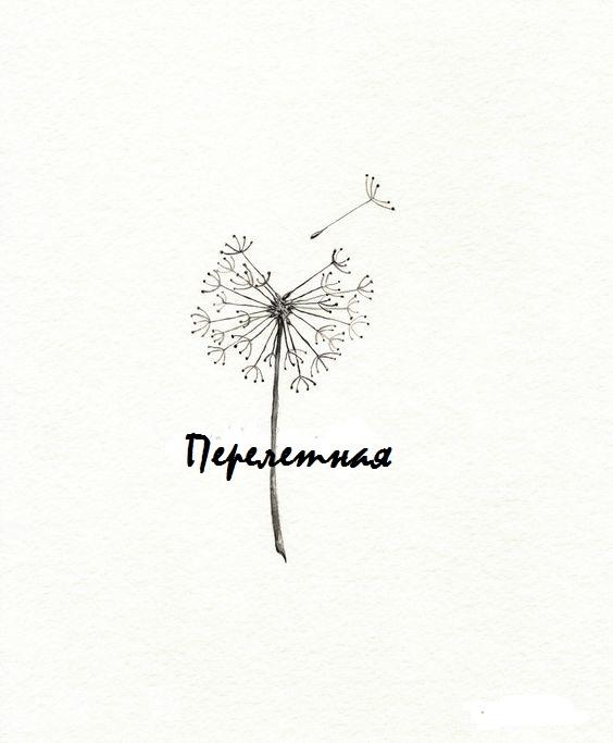 """Афиша Ульяновск Фестиваль """"Перелетная"""""""