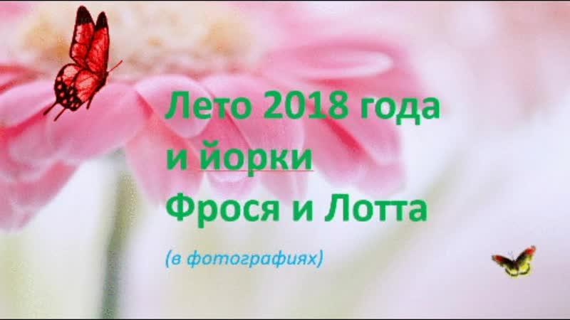 Фрося и Лотта. Воспоминания. Лето 2018г. Воспоминания.