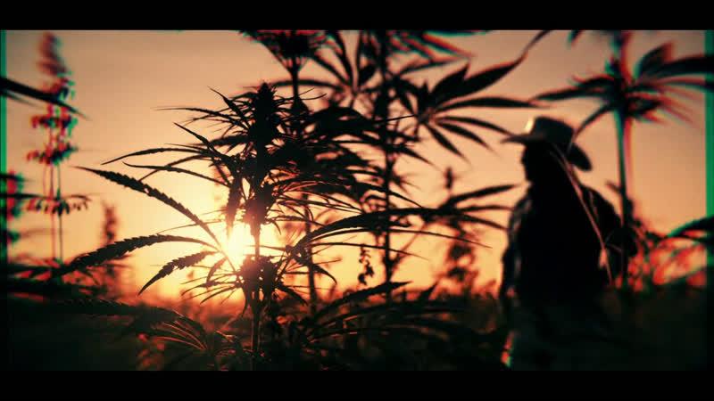 Narcos: Mexico - Opening Credits (2018)