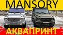 MANSORY GRONOS V2 АКВАПРИНТ VLOG LIVE