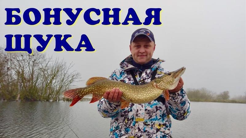 Перспективный водоём Ловля щуки на спиннинг Колебалки и Минноу