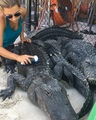 Gabby Scampone on Instagram Since everybody loved my first scrubbing video so much! This is me scrubbing Hector. I like to scrub the alligators j...