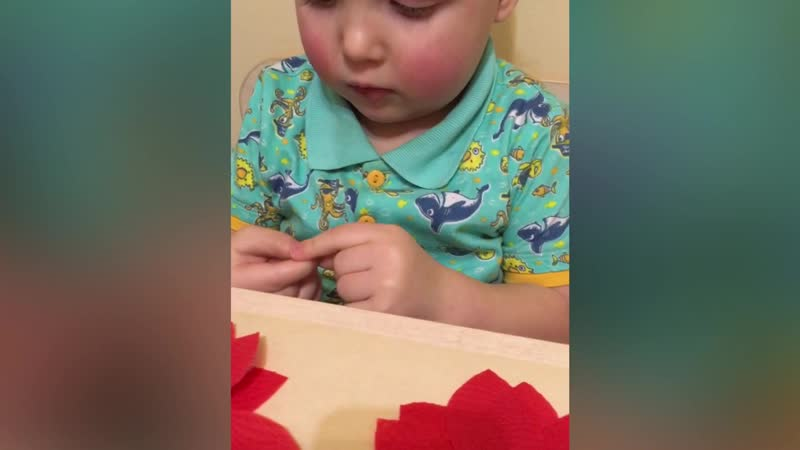 Аппликация Пуансеттия /Рождественская звезда /