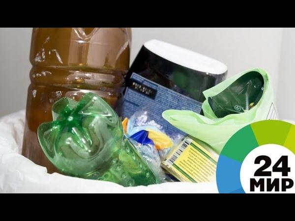 Без пакета с пакетами экологи в Петербурге показали, чем дома заменить пластик - МИР 24