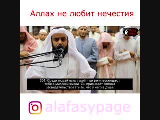 Аллах не любит нечестия! Mishary Rashid